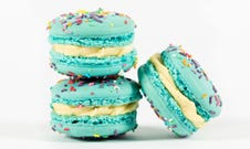 Vanilla (Blue) Cupcake Macarons (Box x 12)